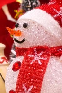 2015年12月28日~2016年1月3日 冬期休暇をいただきます!